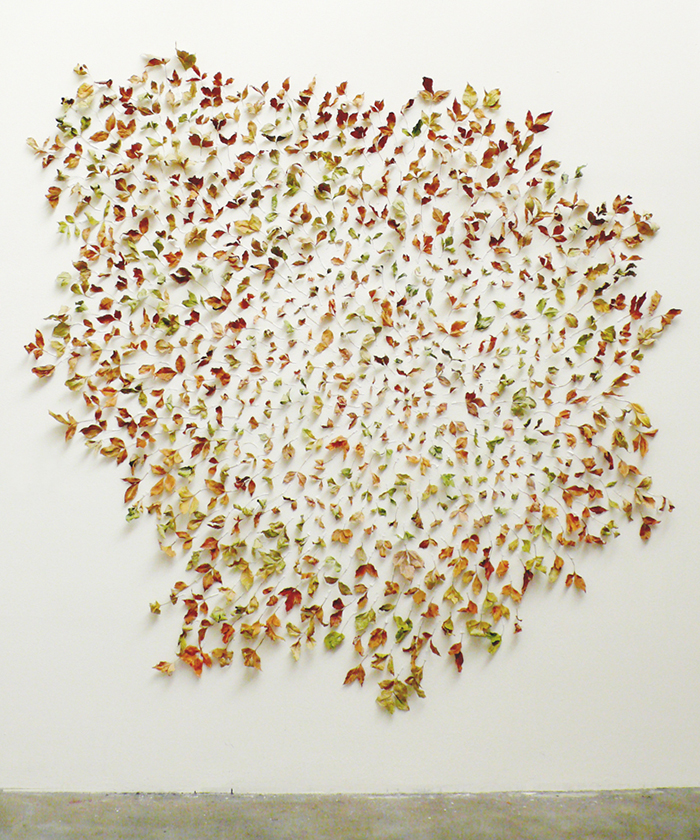 LEAF installation